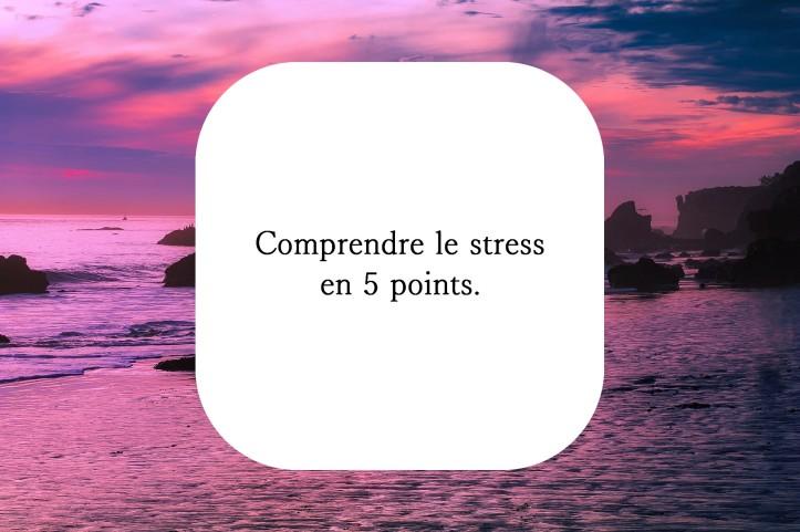 Comprendre le stress naturopathe en ligne