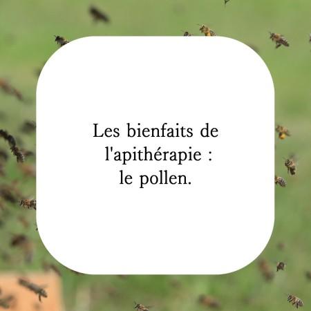 Le pollen des abeilles est un super aliment utile en cas d'ostéoporose, de problème de prostate mais peut aussi aider à limiter les allergies du printemps